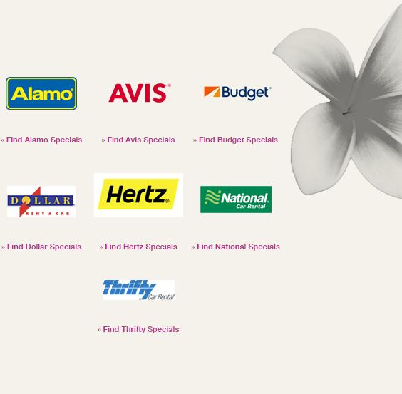 24 Best Ways To Earn Lots Of Hawaiian Airlines Hawaiianmiles