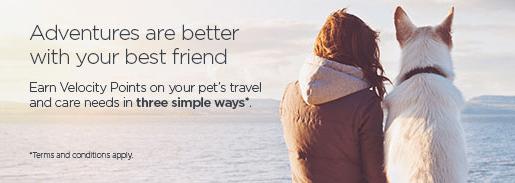 Virgin Australia Velocity Pets