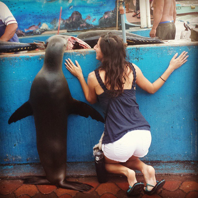 Want to hand with seals at a fish market in the Galapagos? Use your credit card points and airline miles to get you there.