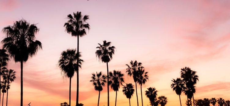 Venice Beach Los Angeles Sunset